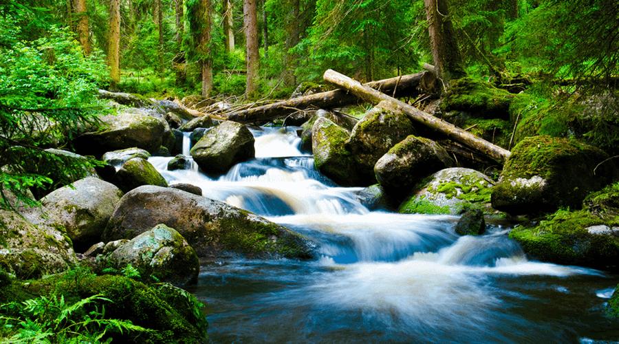 Fotografia artystyczna - rozmazanie wody w rzece
