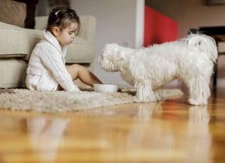 Jak robić dobre zdjęcia - leżąca dziewczyna, dzieci, zwierzęta